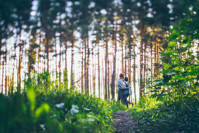 идеи для фото , лес