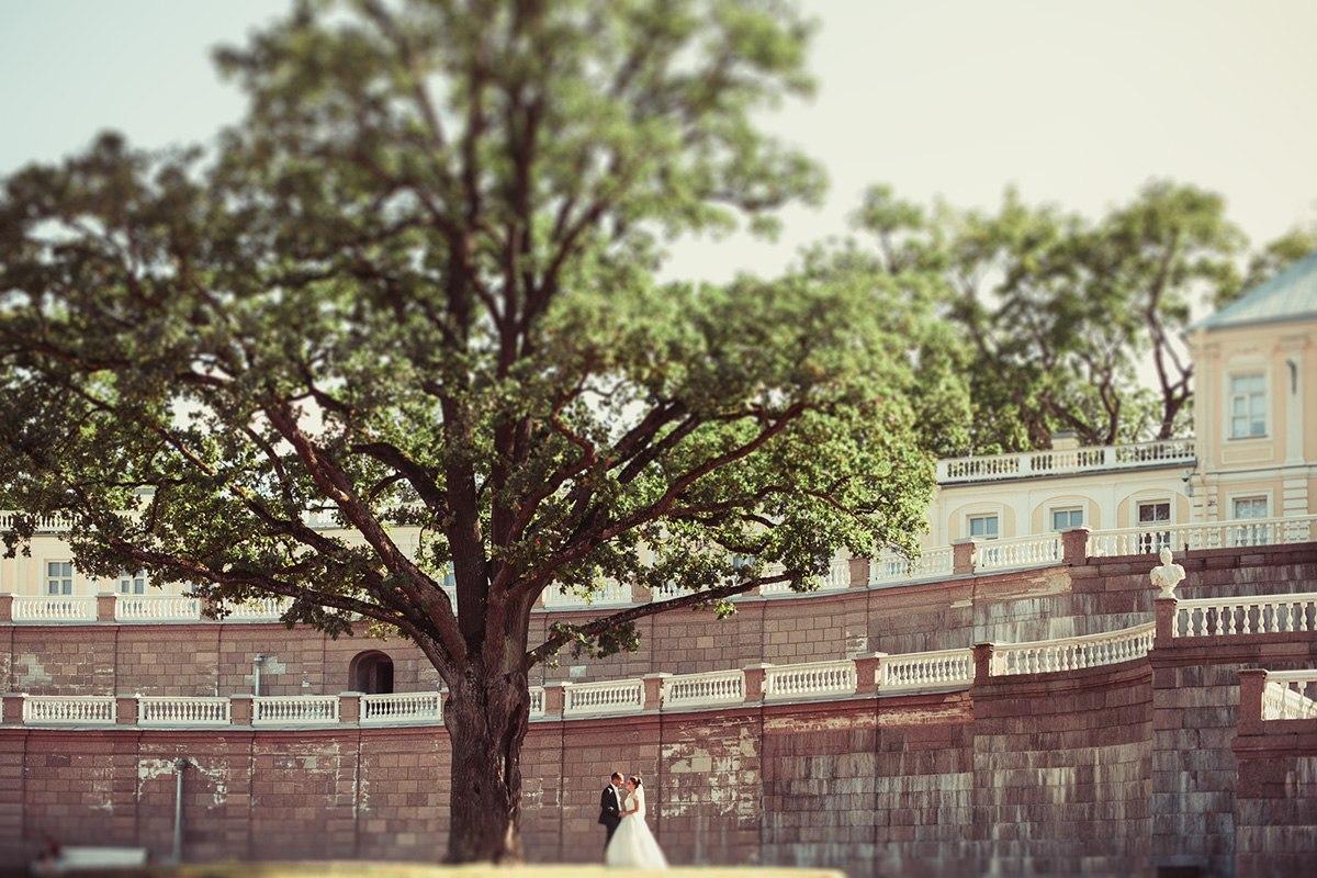 ломоносов,  свадебная фотосессия, фото