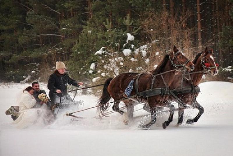 цвета свадьбы зимой фото