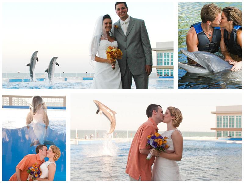Свадебная фотосессия в аквапарке
