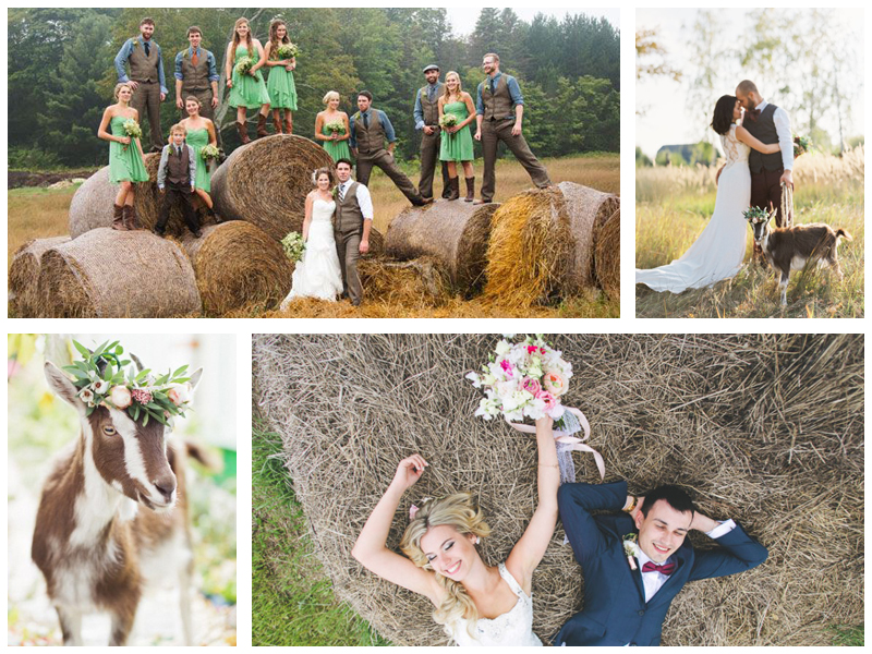 Свадебная фотосессия на ферме
