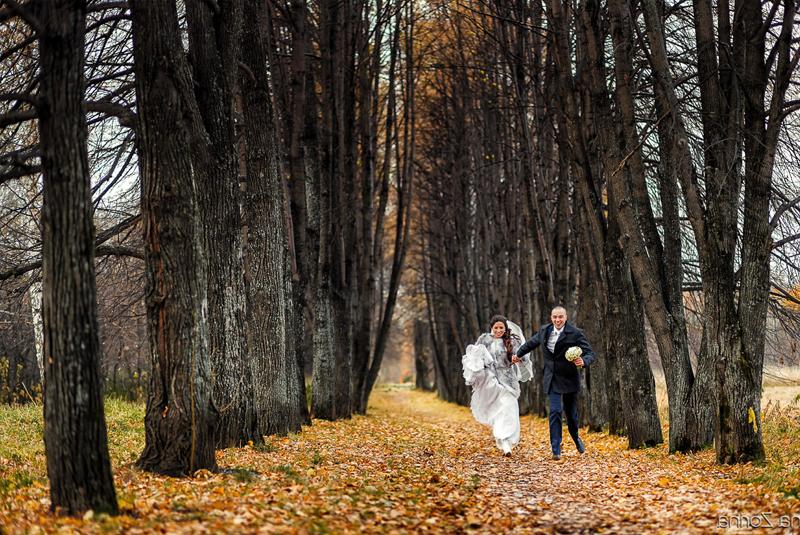 осень время свадеб