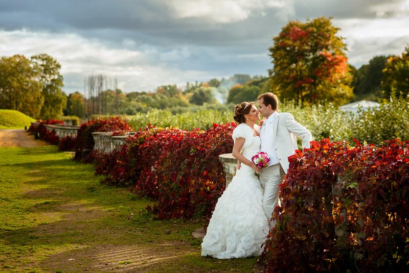 тема свадьбы осень