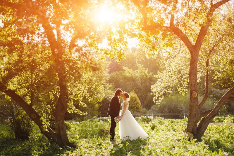 свадьба весной фото гостей