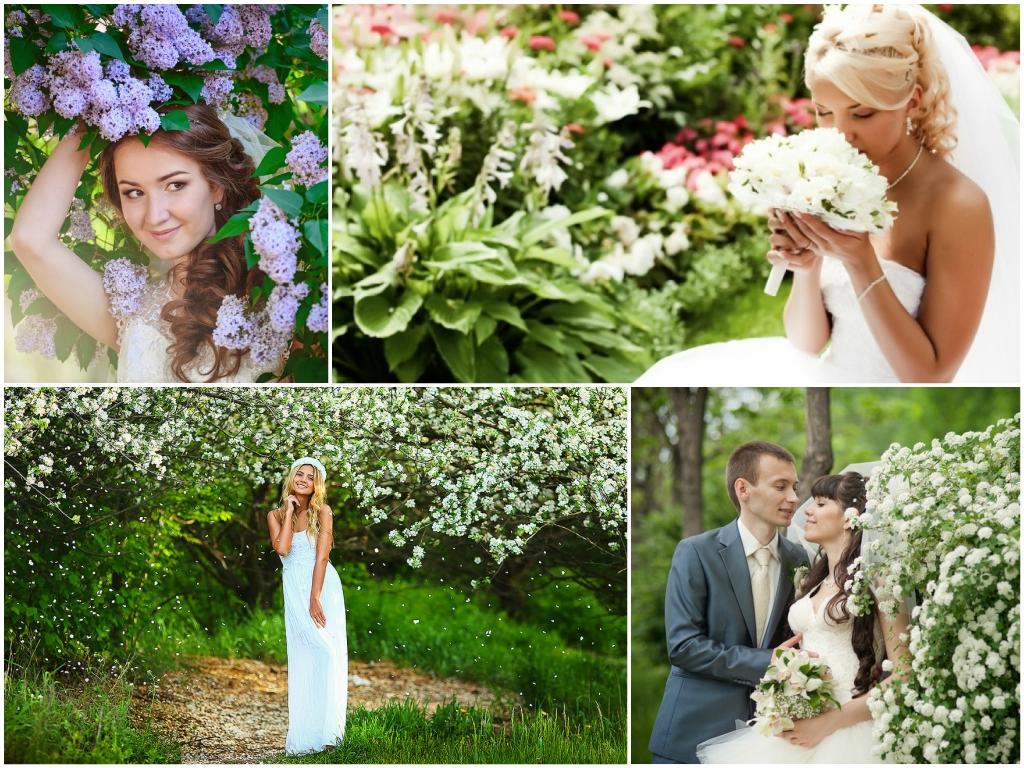 идеи для проведения свадьбы в мае